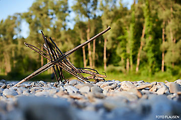 Salzach-Kanu-Tour-_DSC9031-FOTO-FLAUSEN