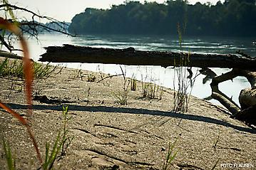 Salzach-Kanu-Tour-_DSC9249-FOTO-FLAUSEN